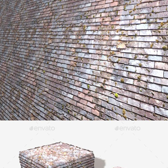 Old Mossy Roof Tiles Seamless Texture