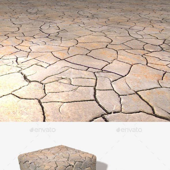 Cracked Mud Seamless Texture