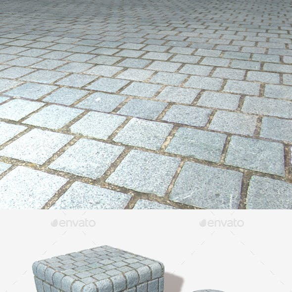 Grey Ground Bricks Seamless Texture