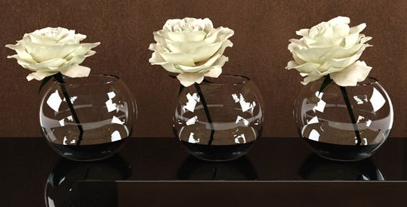 Roses White in a Glass Vessel - 3DOcean Item for Sale