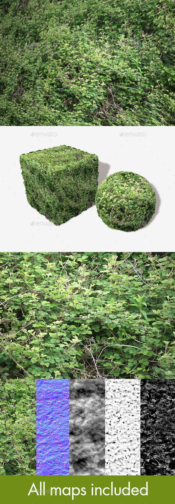 Brambles Background Seamless Texture - 3DOcean Item for Sale