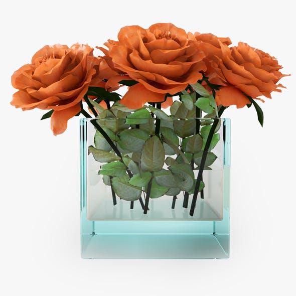 Orange Roses - 3DOcean Item for Sale