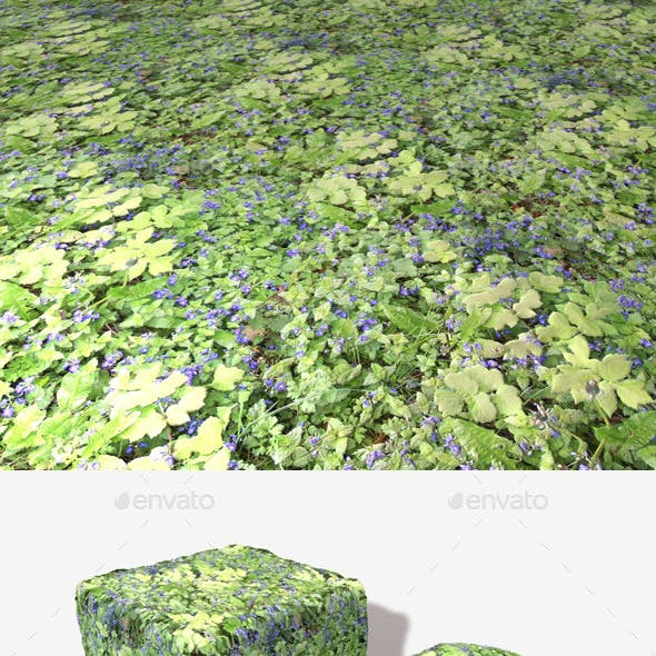Blue Flowers Seamless Texture
