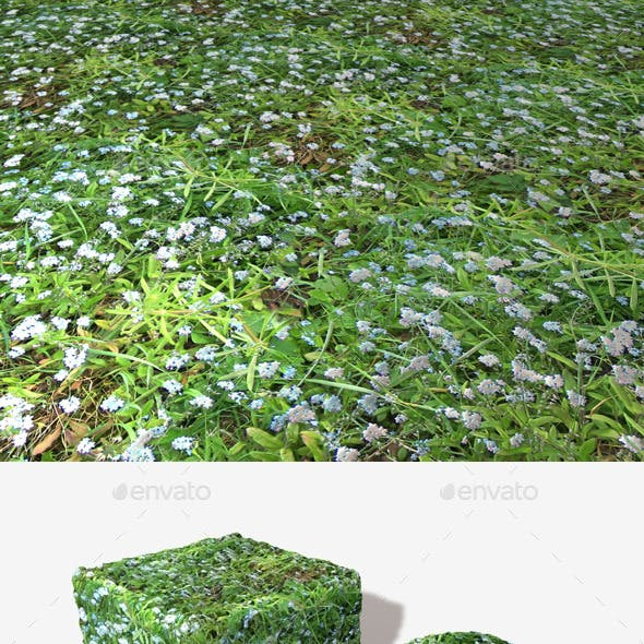 Pale Blue Flowers Seamless Texture