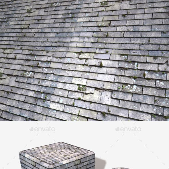 Mossy Slate Roof Tiles Seamless Texture