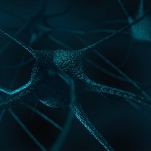 Nerve - 3DOcean Item for Sale