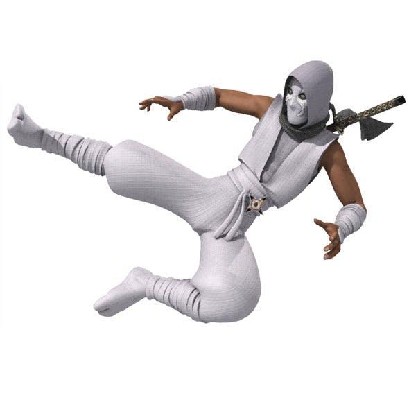 Ninja RIGGED