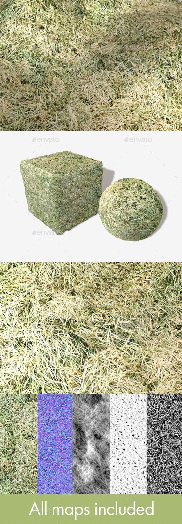 Cut Grass Seamless Texture - 3DOcean Item for Sale