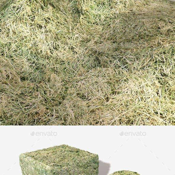 Cut Grass Seamless Texture