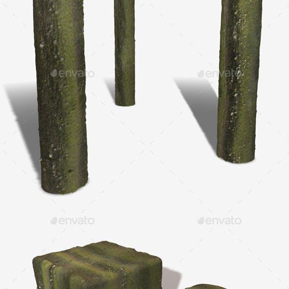 Green Bark Seamless Texture