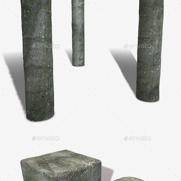 Mossy Bark Seamless Texture