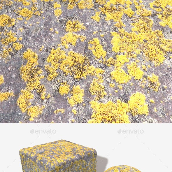 Mossy Stone Seamless Texture