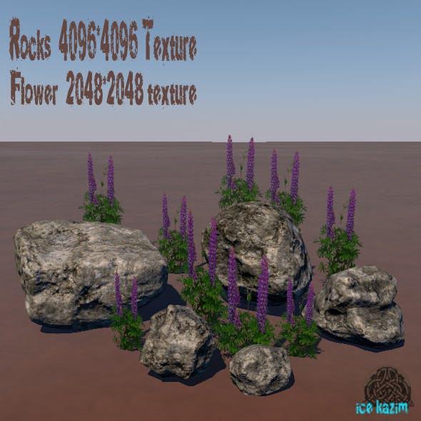 Rocks_flower - 3DOcean Item for Sale