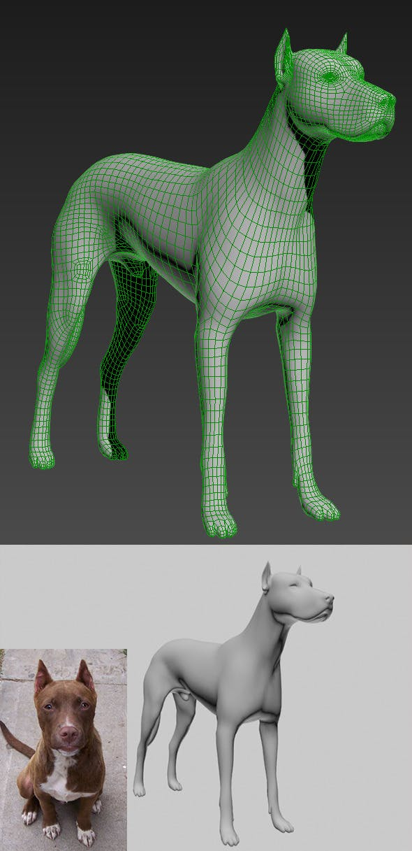 3d Dog Model - 3DOcean Item for Sale