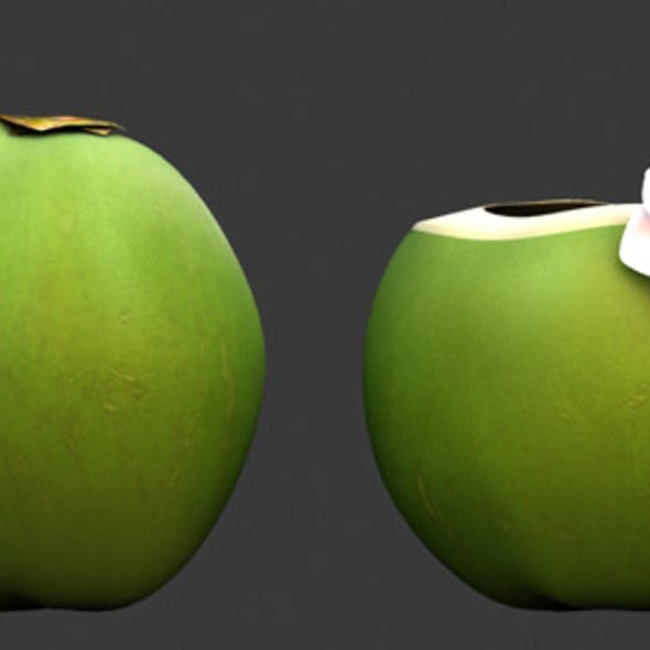 3D Model- Coconut