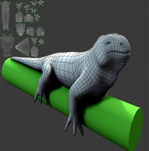 Lizard_Basemesh - 3DOcean Item for Sale