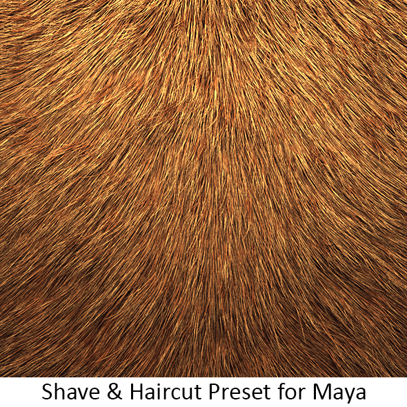 Shave Animal Fur2