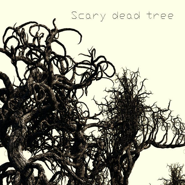 6 Scary Dead Trees