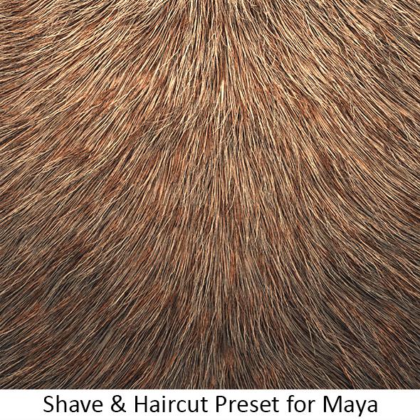 Shave Animal Fur3