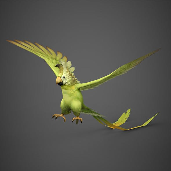 Game Ready 3D Parrot Bird