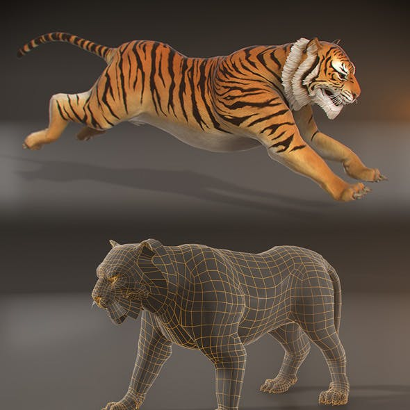 Animated Tiger - Low Poly