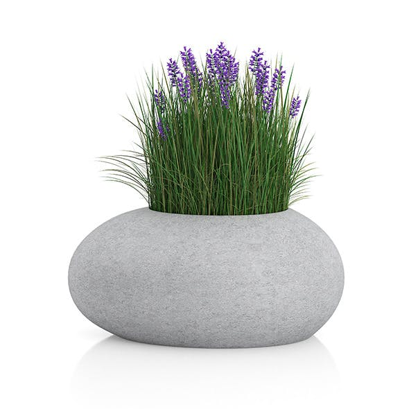 Grass with Flowers in Concrete Pot - 3DOcean Item for Sale
