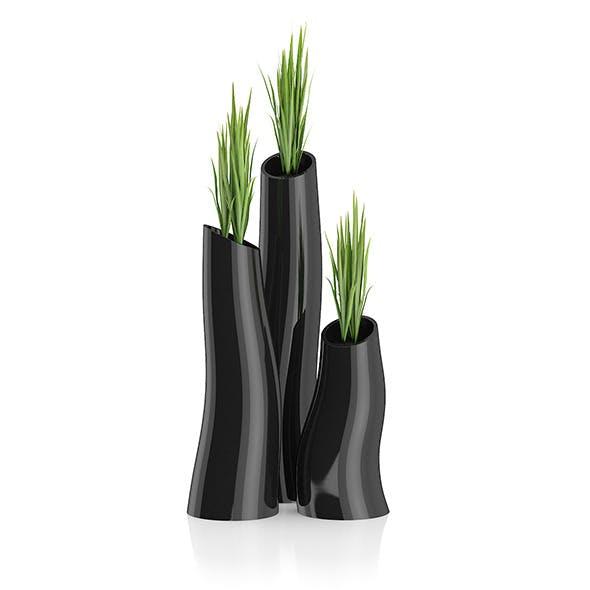 Three Plants in Black Pots - 3DOcean Item for Sale