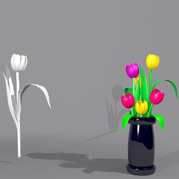 Tulip Flower Package
