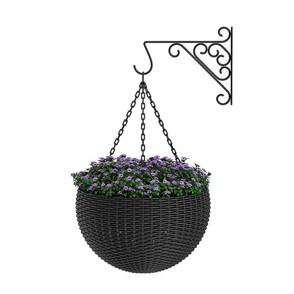 Wall Hanging Flowers - 3DOcean Item for Sale
