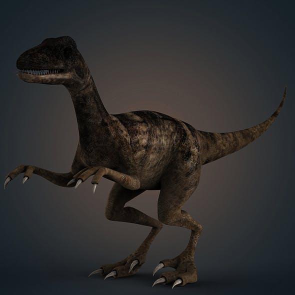 veloster raptor dinosaur - 3DOcean Item for Sale