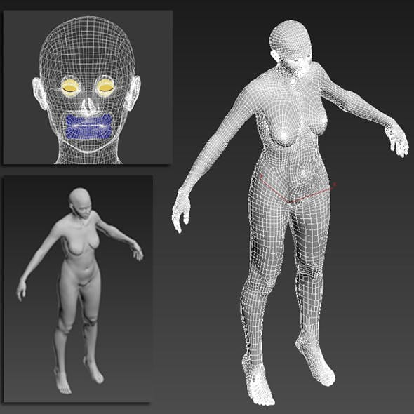 Woman Body Base