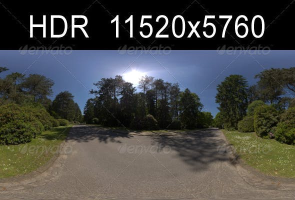 Road with Trees - 3DOcean Item for Sale