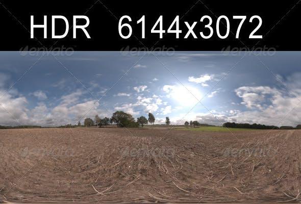 Road in fields 4 - 3DOcean Item for Sale
