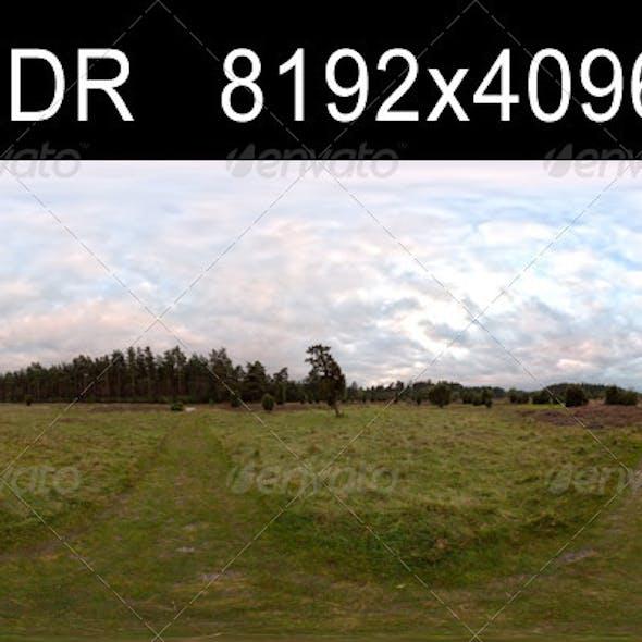 Field Path Cloudy 3