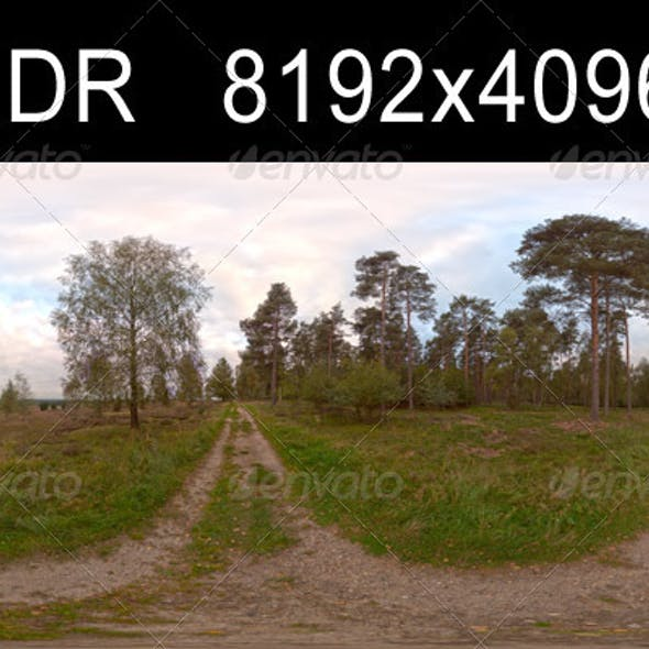 Field Path Cloudy 1