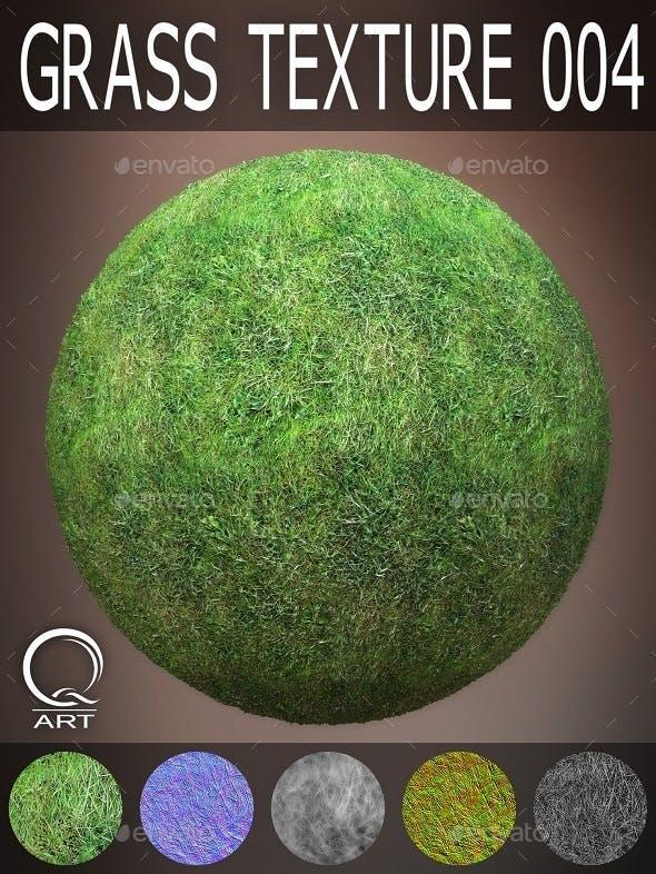 Grass Textures 004 - 3DOcean Item for Sale