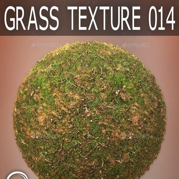 Grass Textures 014