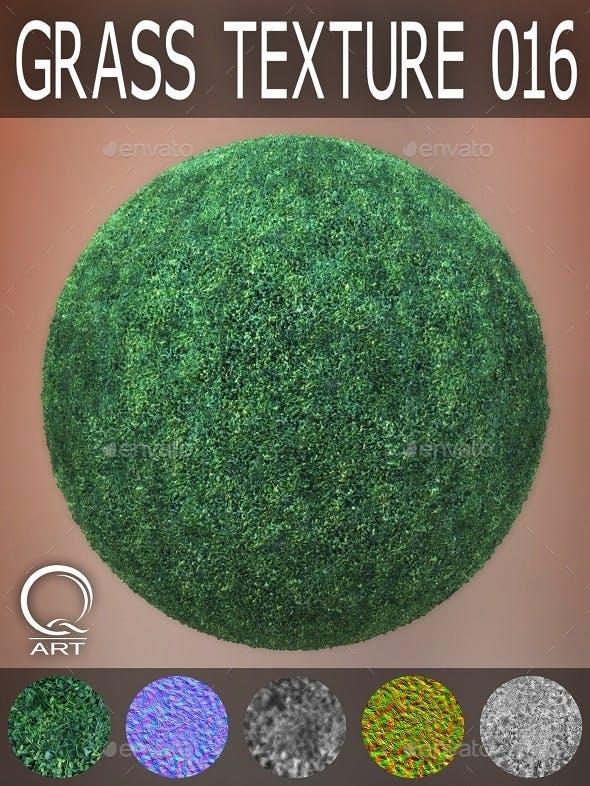 Grass Textures 016 - 3DOcean Item for Sale