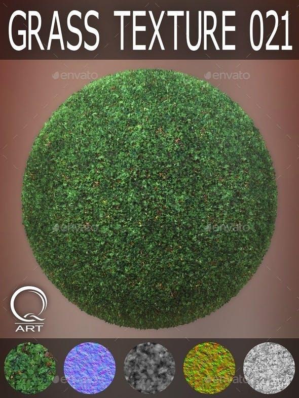 Grass Textures 021 - 3DOcean Item for Sale