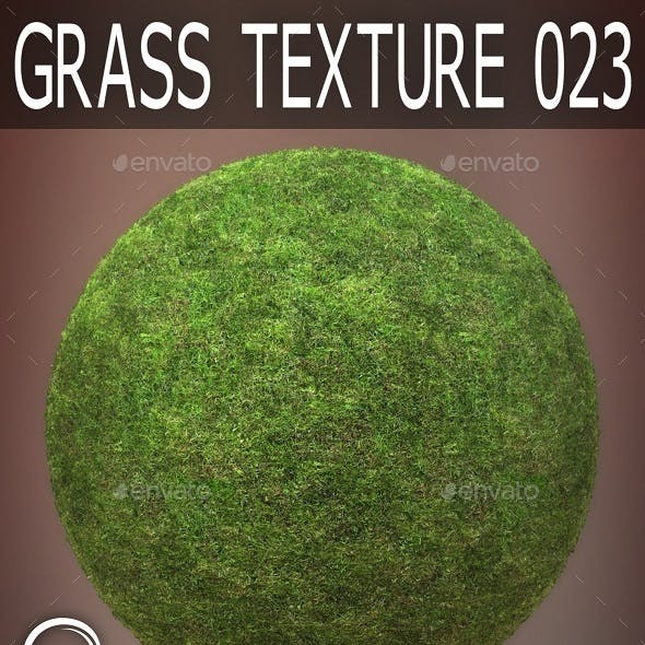 Grass Textures 023