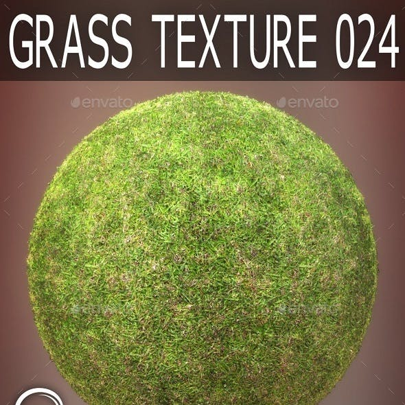 Grass Textures 024