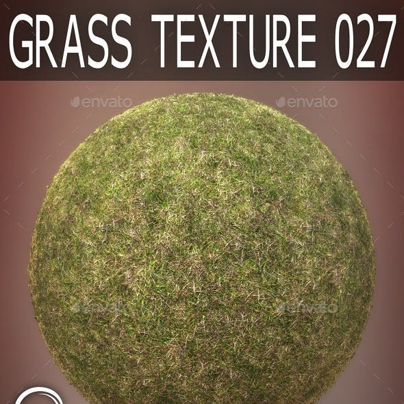 Grass Textures 027