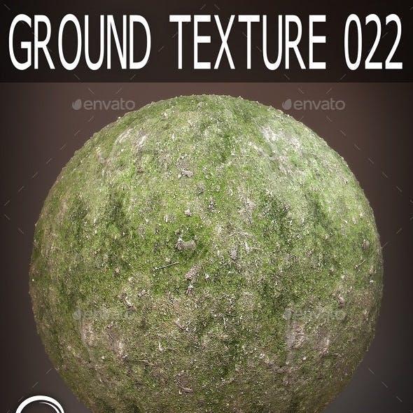 Ground Textures 022