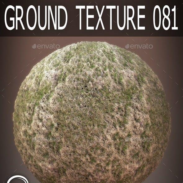 Ground Textures 081