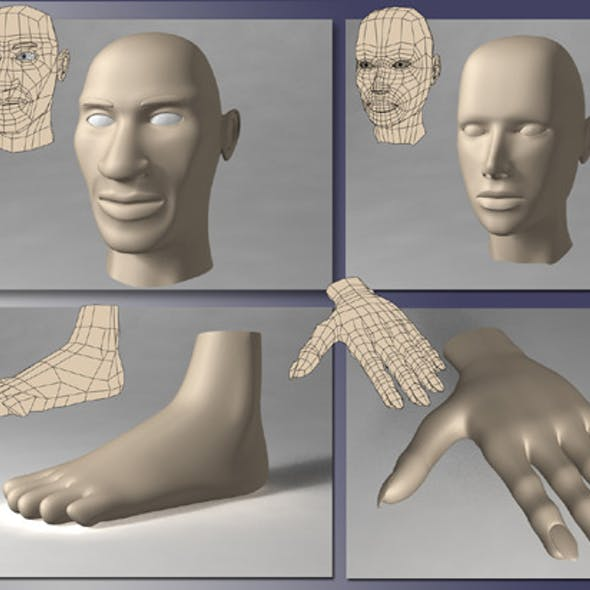 Human Body Parts Pack