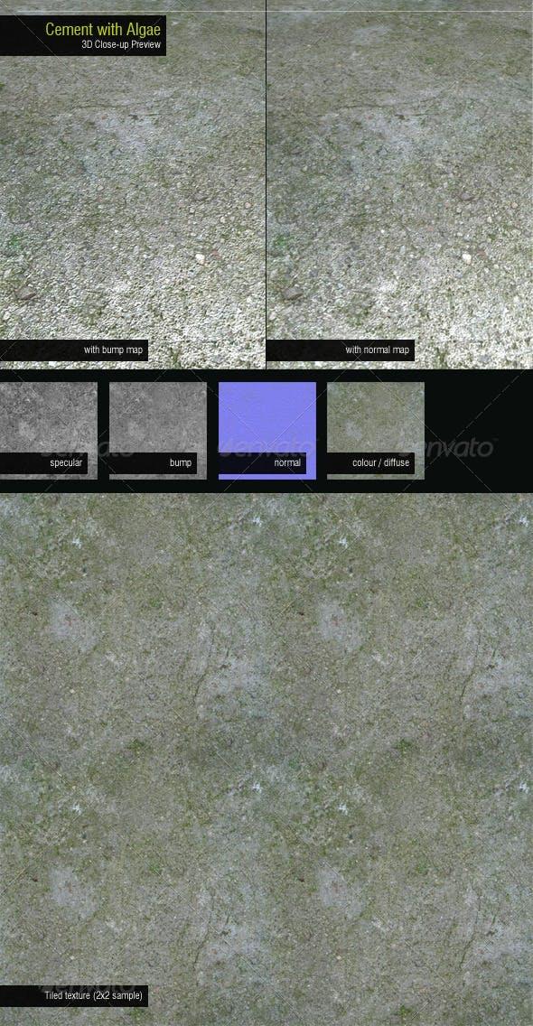 Concrete with Algae - 3DOcean Item for Sale