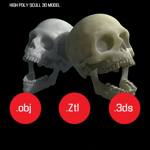 HIGH POLY SCULL 3D MODEL