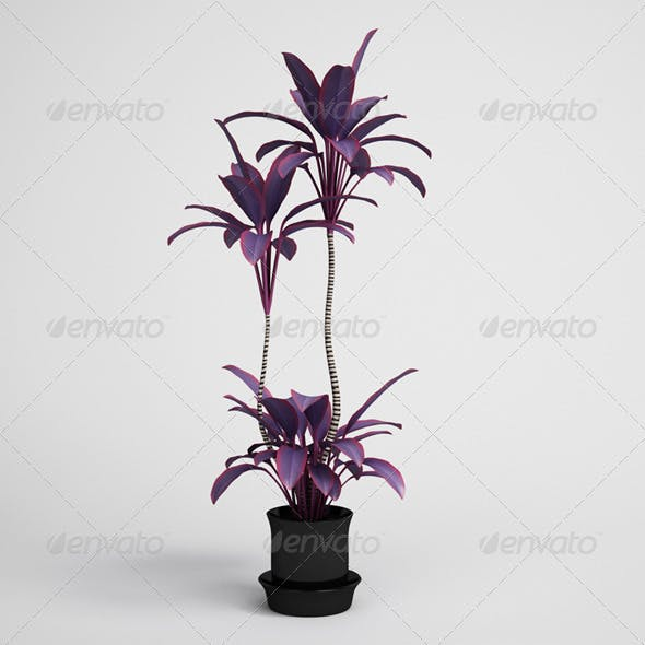 CGAxis Potted Plant 13