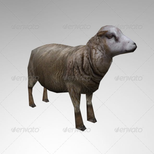 Animated Lowpoly Sheep - 3DOcean Item for Sale