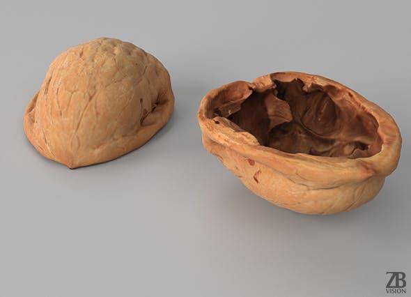 Walnut - 3DOcean Item for Sale